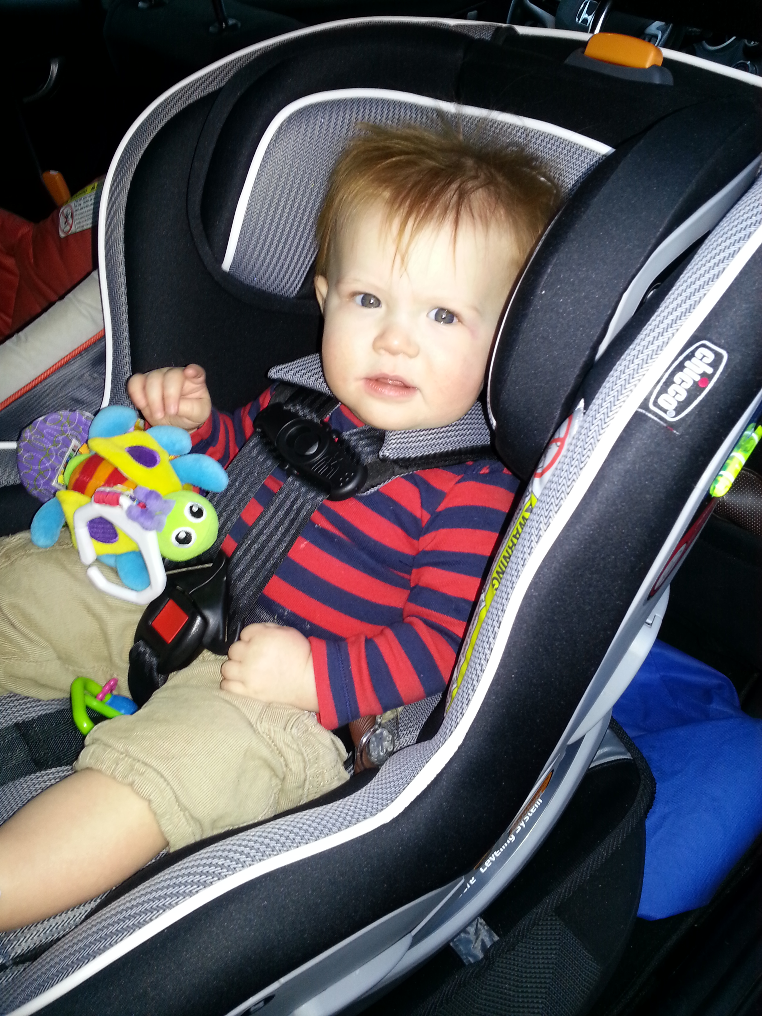 Chicco NextFit Convertible Carseat Review Leave A Comment Daxton Sitting In His New Ride